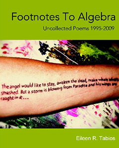 Footnotes to Algebra by Eileen R. Tabios